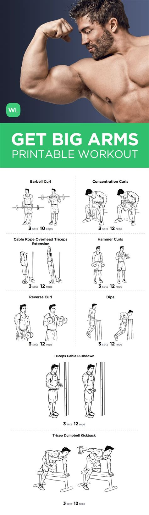 big arm bicep and tricep workout workout routine