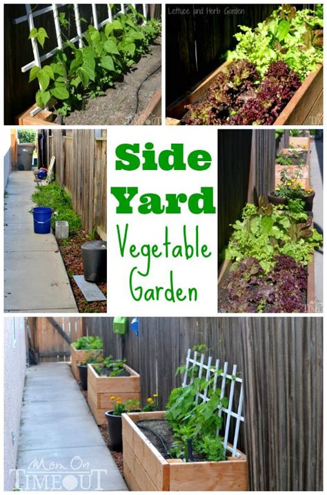 Side Yard Vegetable Garden Small Space Solutions Diy Diy Vegetable Garden Boxes