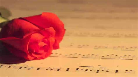 Wedding Background Instrumental by Instrumental Songs Hits Playlist Most