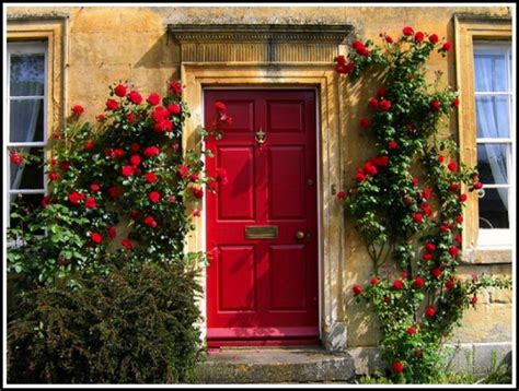 Feng Shui Plants For Front Door Feng Shui For Your Home