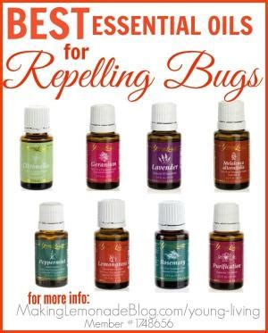 diy bed bug spray essential oils homemade bug spray with free printable
