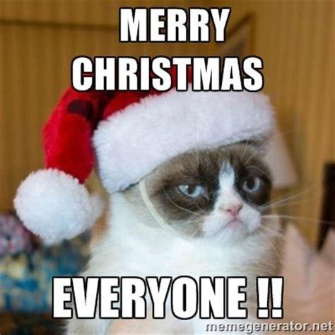 funniest merry christmas memes sayingimagescom