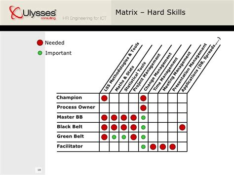 Mba Team Skills Matrix by Lean Six Sigma Hr Point Of View