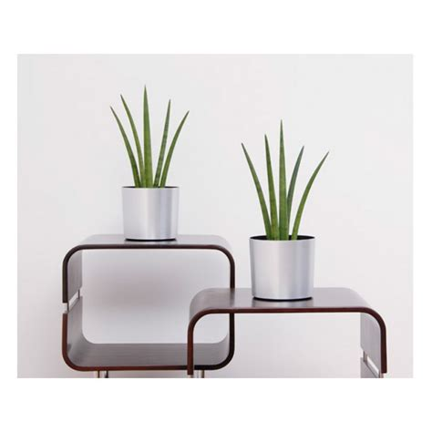 Plastic Table Top Planters Newpro Containers Table Top Planter