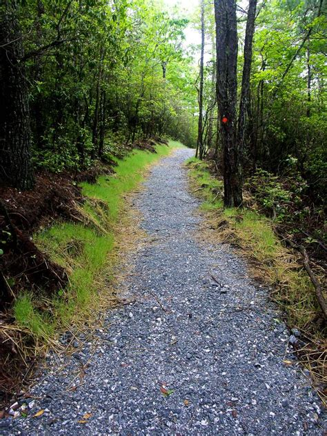 Newly Built gravel start to the rainbow falls trail