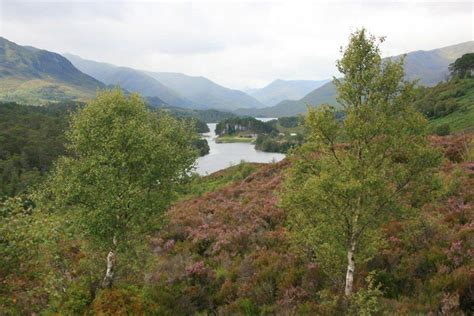 glen affric six hour glen affric easy gentle walk from inverness