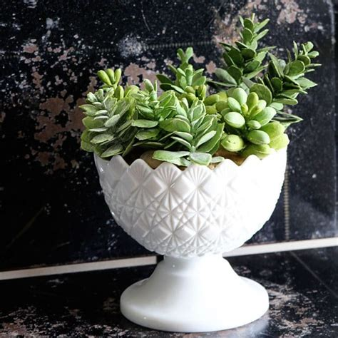 succulent planters yard sale makeover no 4 milk glass succulent planter house of hawthornes