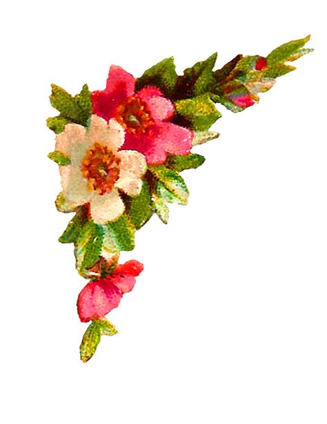 design a flower antique images digital flower corner design roses clip