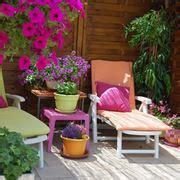 terrazzo fiorito piante da terrazzo in vaso