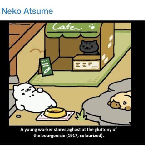 Meme And Neko - 25 best memes about neko atsume neko atsume memes