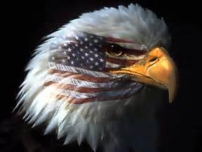 american eagle the makes