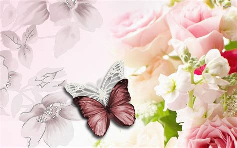 wallpaper flower and butterfly butterfly and flower wallpapers wallpaper cave