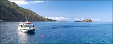castle comfort dominica castle comfort dive lodge dominica reviews specials