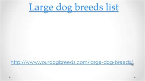 big breeds list large breeds list