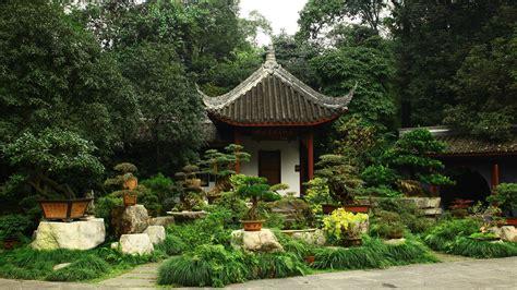 Patio Pot Plants by Garden Pot Plants Tree Pot Plant Japanese Bonsai Building