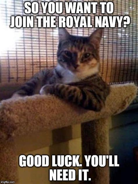 Good Luck Cat Meme - the most interesting cat in the world meme imgflip