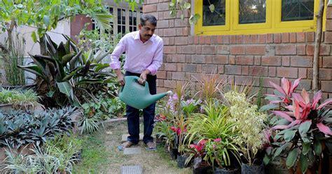 rooftop gardening  catching   india
