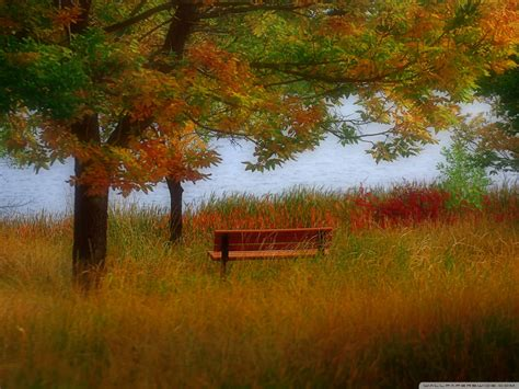 autumn scenery wallpaper  images