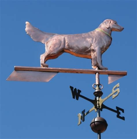 golden retriever weathervane weathervane golden retriever standing west coast weathervanes
