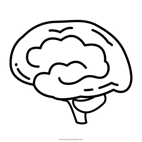 brain coloring page brain coloring page ultra coloring pages