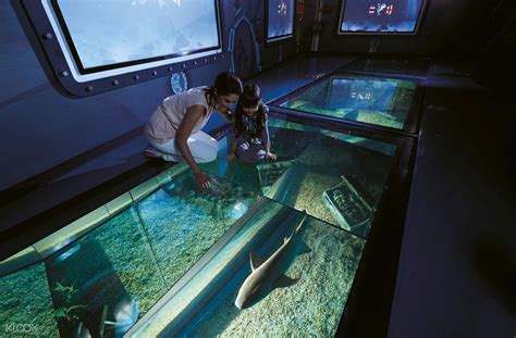 Voucher Tiket Combo Aquarium4d Siam World Bangkok sea bangkok world ticket bkk airport up in thailand klook