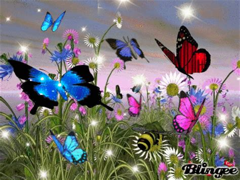 imagenes catolicas luminosas gifs de animales mariposas con movimiento