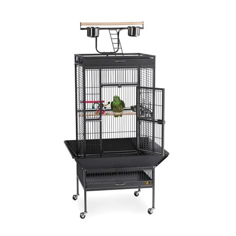 medium cage medium sized bird cages bird cages