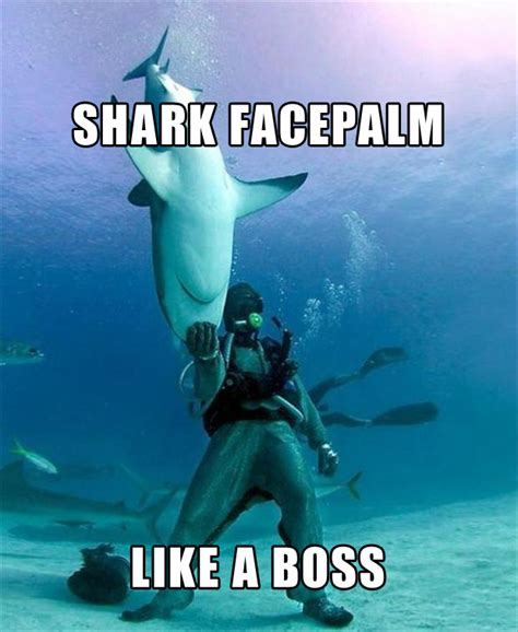 Like A Boss Meme - the best of quot like a boss quot 40 pics