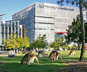 Central Queensland Mba Ranking by Usc Reviews By Students Uni Reviews