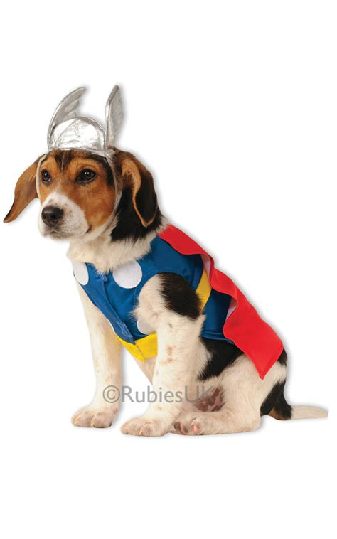 thor and the dogs books thor pet fancy dress comic book pet animal