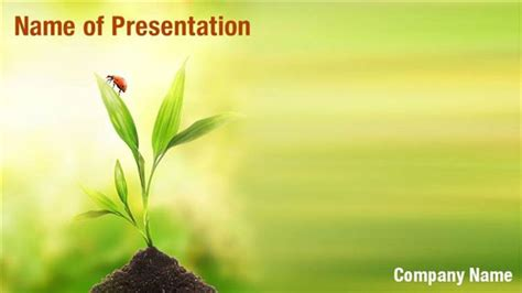 plants themes for powerpoint 2007 free download ladybug on plant powerpoint templates ladybug on plant