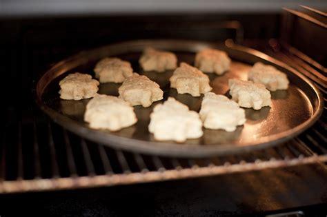 Oven Cookies baking cookies in oven www imgkid the image kid