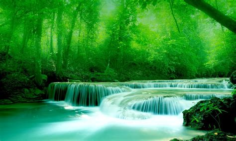 wallpaper river water rocks trees wallpaper river water rocks trees greenery free