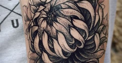 tattoo nightmares flower of survival chrysanthemum tattoo tumblr reminds me of the flower on