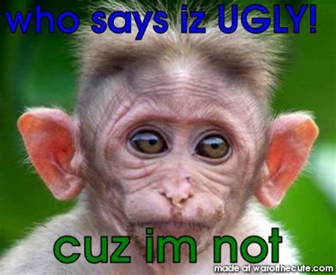monkey pictures with captions monkey pictures with captions www pixshark