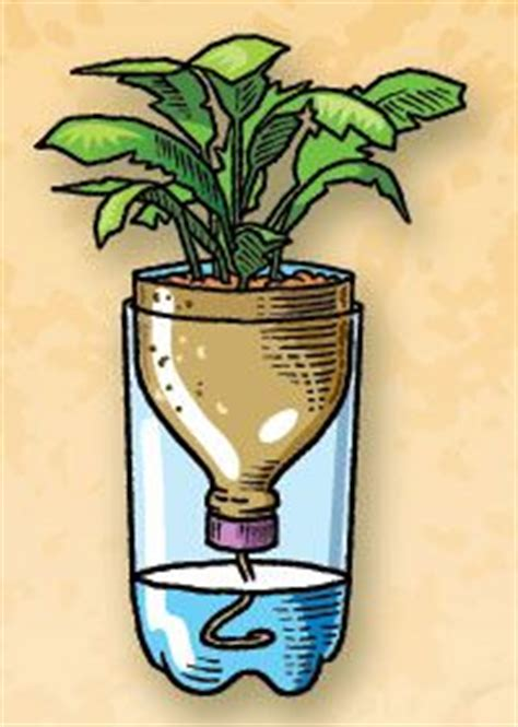 plastic 2 liter bottle planter 1000 images about gardening and outdoor life on pinterest