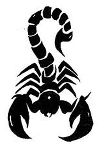 graffiti art designs gallery graffiti sketches scorpion