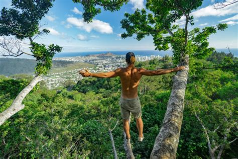 tree house to buy 80 things to do on oahu the bucket list journey era