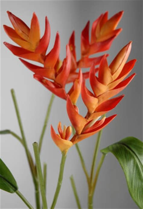 Home Decor Candle Lanterns Natural Touch Heliconia Tropical Flower