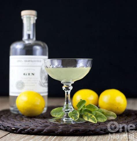 1000 images about gin cocktails on pinterest lillet rouge best gin and tonic and martinis