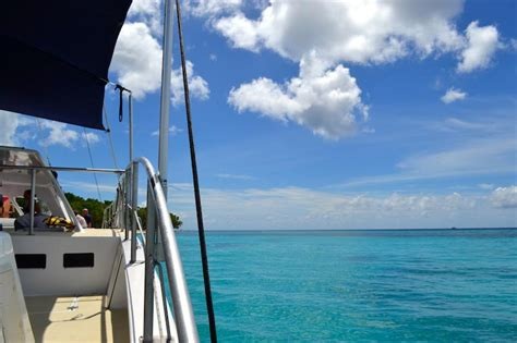 catamaran companies barbados day trips in barbados for the whole family
