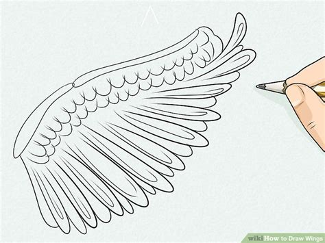 Drawing Wings by 3 Ways To Draw Wings Wikihow