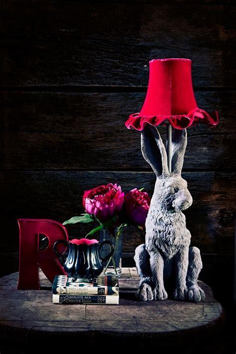 Abigail Ahern Rabbit L abigail ahern in debenhams dear designer