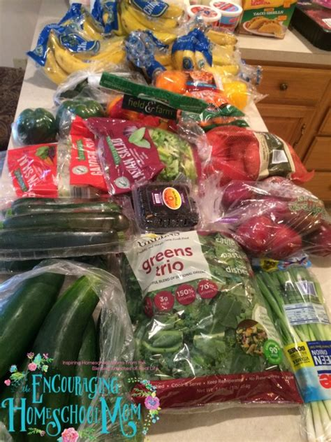 family of nine aldi one week grocery haul large family