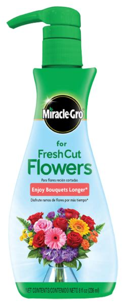 cut flowers food miracle gro for fresh cut flowers flower food miracle gro