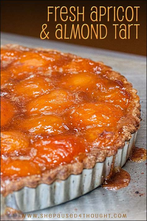 fresh apricot dessert
