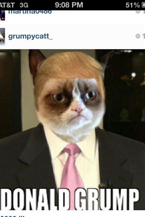 The Grumpy Cat Memes - happy grumpy cat meme dog breeds picture