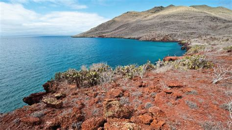 galapagos best islands galapagos cruises information and deals by metropolitan