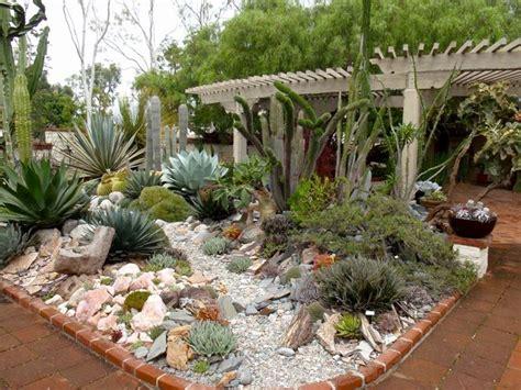 giardino di giardino di piante grasse piante grasse creare un