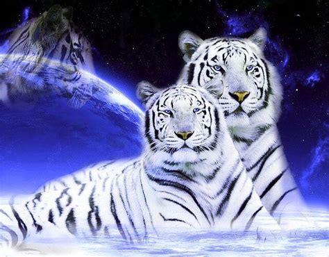 filme schauen the iron giant wei 223 e tiger mond kunst hintergrundbild hintergrundbilder
